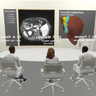 VR Multi-user Conference Room for Surgery Planning