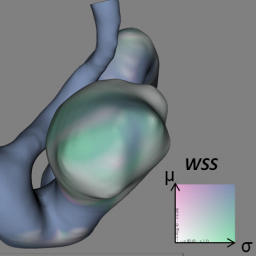 Evaluation of Time-Dependent Wall Shear Stress Visualizations for Cerebral Aneurysms
