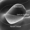 Generation of a Smooth Ostium Surface for Aneurysm Surface Models
