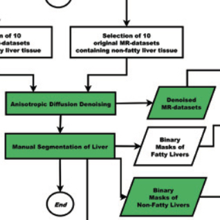 Image analysis in epidemiological applications